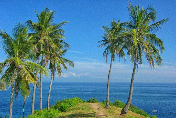 Bukit Nipah, Lombok Utara