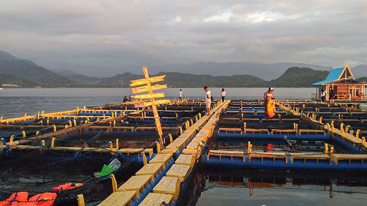 Resto Apung Pulau Bungin