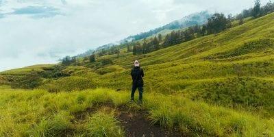Taman Nasional Gunung Tambora